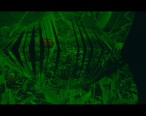 RGB_film still
